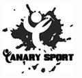 diseño web canary sport